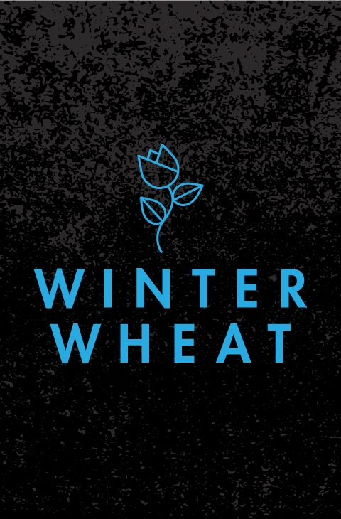 Poster_WinterWheat_480x730